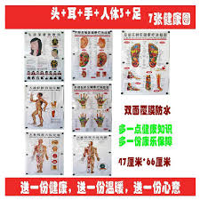 Chinese Ear Chart 10pcs Chart Human Body Wall Map Acupuncture Point Scrapping