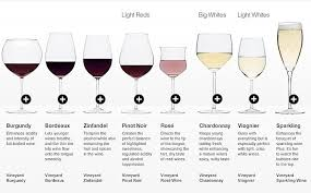 Wine Glass Size Chart 16 Things Everyone Should Know About Wine