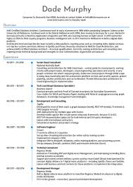 Software Engineer Resume Beauteous Software Engineering Resume Samples From Real Professionals Who Got