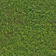seamless dark grass texture. Seamless Grass Lawn Texture Dark