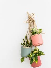 DIY Hanging Wire Planter by A Joyful Riot