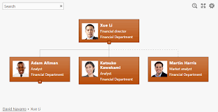 Dotted Line Org Chart Display Dotted Line Managers In Org Chart For Sharepoint