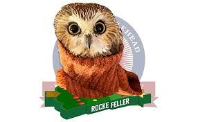 Owl found in Rockefeller Christmas tree ...