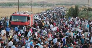 Image result for open borders