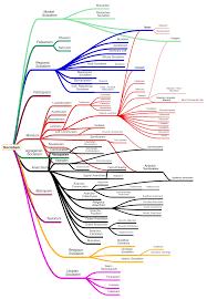 Cohesive Chart Of All Socialist Tendencies V 2 Socialism