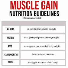 Top 10 Foods To Gain Muscle Mass Breaking Muscle