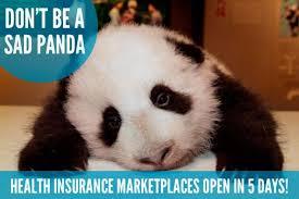 Cute animals promote 'Adorable Care Act,' Obamacare - NY Daily News via Relatably.com