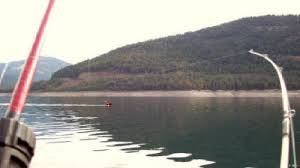 Image result for planer board fishing pics