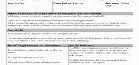 Development Goals For Project Managers Example Career Plan Goal