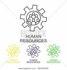 Human Resources Workflow Chart Hr Flow Chart Line Vector Photo Free Trial Bigstock