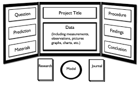 How To Make A Chart For A Science Fair Project Science Fair Ideas