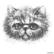 Fotobehang Persian Cat Nikkel Art