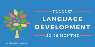Language Development In Toddlers 30 36 Months
