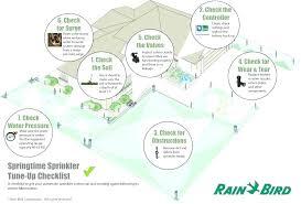 Rainbird Maxi Paw Dbazaar Co