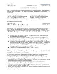 Executive Resume Samples Prime It Free