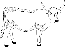 Small Picture Cool Cow Coloring Pages KIDS Design Gallery 1358 Unknown