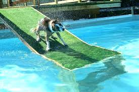 water ramp for dogs dog pool homemade home blog the best ins and installation boat in