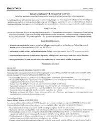 Sample Of Executive Resumes Security Executive Resume