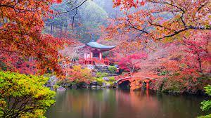 Wallpaper Japan, Kyoto, park, pagoda ...
