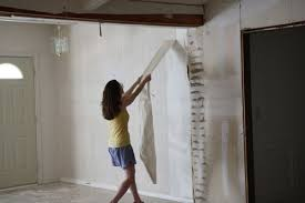 remove wallpaper paste from plaster on