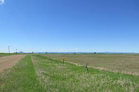 Nelson Fields | Newell, SD - Butte County | Land for Sale | Farm & Ranch