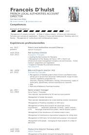 Ideas of French Resume Sample With Download