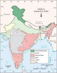 Soil Characteristics Chart Soils Of India Classification And Characteristics Clear Ias