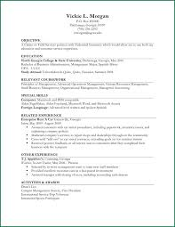Resume Example II (limited work experience)