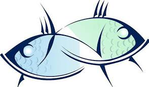 Fakta O Znamení Zvěrokruhu Ryby Obecná Charakteristika