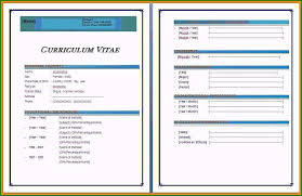 Resume Templates Free Download Word 2007 Ideal Cv Format In
