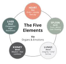 Chinese Medicine Five Elements Chart Doctor Of Chinese Medicine Best Acupuncture Acupuncture