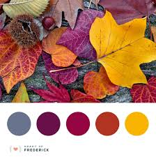 I bet you love fall leaves as much as we do. So many amazing ...