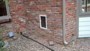 dog doors for walls pet door gallery dog doors in brick walls dog door in brick