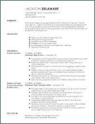 Language Skills Resume Delectable Resume Examples Foreign Language Skills Plus Skill For Make Amazing