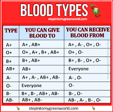 Who Can Donate Blood To Whom Chart Blood Donation Charts All You Need To Know About Blood
