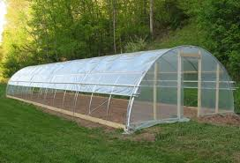 thrifty greenhouse small practical and easy to build