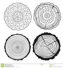 Tree Rings Set Of Cross Section Stock Vector Illustration Of Boho