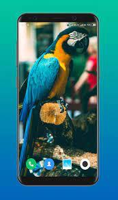 Wallpaper For Vivo V15 Pro for Android ...