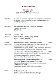 ... Marvellous Ideas Successful Resumes 14 Resume Format 2015 10 Most ...