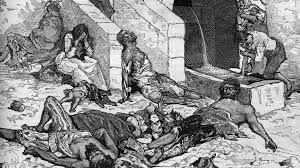 Image result for BOMBAY PLAGUE PHOTOS
