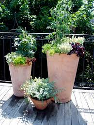 10 container gardens that mix edible