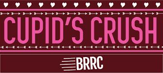 Baltimore 10 Miler Elevation Chart Cupids Crush Baltimore Road Runners Club