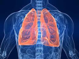 бронхиальная астма Аллергология и Иммунология Бронхиальная астма клиника диагностика методы профилактики и лечения