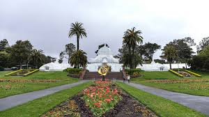 top things to do in golden gate park