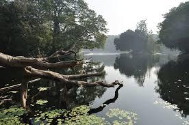acharya jagadish chandra bose indian botanical garden kolkata