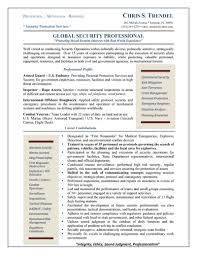 Global Security Professional Resume