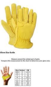 306 Best Gardening Gloves 139864 Images In 2019 Gardening