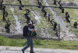 Resultado de imagen de camino de santiago el bierzo entre viñas