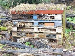 insect hotel wolseley centre wolseley bridge nr rugeley staffordshire uk insect hotels on waymarking com