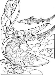 3D Sharks Coloring Pages